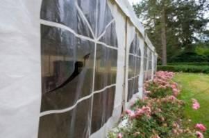hamburg: rechtsextreme tat? festzelt auf ohlsdorfer friedhof zerstört