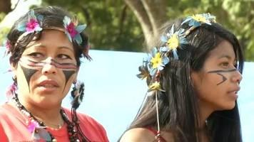 video: bolsonaro wegen amazonas-rodung in der kritik
