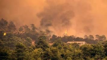 Griechischer Regierungschef bricht wegen Waldbrands auf Insel Euböa Urlaub ab