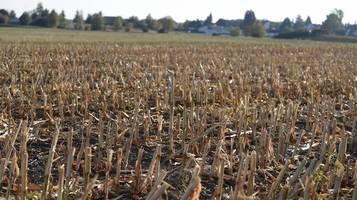 In Niederbayern wird das Trinkwasser knapp – Regierung warnt