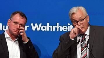 Spaniel: Acht AfD-Vorstandsmitglieder fordern Rücktritt