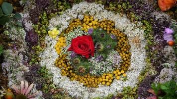 Kräuterweihen und Prozessionen zu Mariä Himmelfahrt