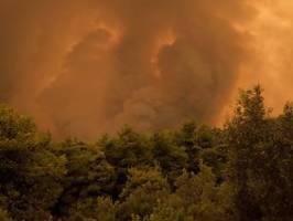 Weniger verheerend als gedacht: Wie sehr schaden Flächenbrände dem Klima?