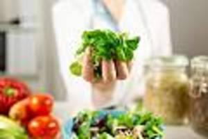 6 fachärzte klären auf - 16:8, antioxidantien, kein fleisch: wie Ärzte sich ernähren - und was wir daraus lernen können