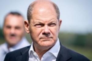 Agrar: Olaf Scholz hält Agrarforstwirtschaft für gute Idee