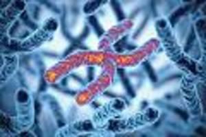 pflegen sie ihre telomere - anti-aging für die zellen: 7 dinge helfen ihnen, um biologisch jünger zu werden