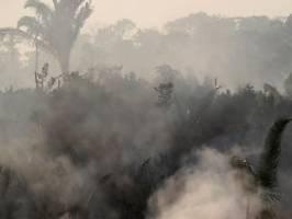 inferno am amazonas: bolsonaro heizt verschwörungstheorien an