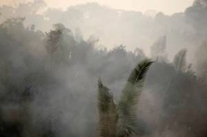 Waldbrand: Amazonas-Regenwald brennt: Diese Karten zeigen ganzes Ausmaß