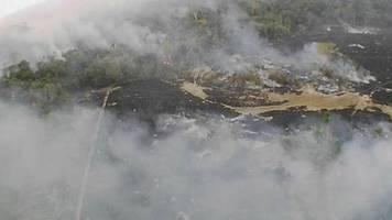 Flammenhölle Amazonas: Brände zerstören Brasiliens grüne Lunge