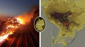 Grüne Lunge der Welt in Flammen: Der Regenwald brennt: Diese Karten zeigen das verheerende Ausmaß der Feuer am Amazonas