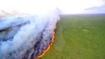 Brasilien: Macron appelliert wegen Waldbränden an G7-Teilnehmer