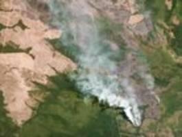 Wer den Hambacher Forst abholzt, darf sich über Brasilien nicht beschweren