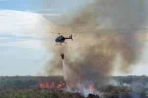 Brände in Brasilien: Bolsonaro verbittet sich Ratschläge des Auslands
