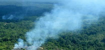 Der Amazonas brennt - und Bolsonaro will keine Ratschläge
