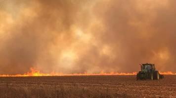 Regenwald: Irland droht wegen Amazonas-Bränden mit Blockade von EU-Mercosur-Abkommen