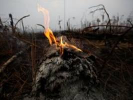 Waldbrände in Brasilien: Bolsonaro verspricht Null-Toleranz-Politik gegen Brandstifter