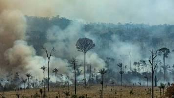 Hunderte neue Feuer in Brasilien