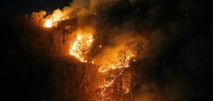 Brasilien brennt. Und der Präsident zündelt