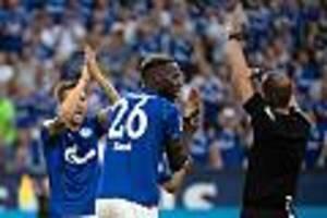 Bundesliga - Riesen-Ärger um Video-Schiri: Schalke fühlt sich gegen die Bayern betrogen