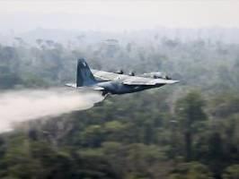 Waldbrände im Amazonas-Regenwald: Brasilianisches Militär kämpft gegen Feuer