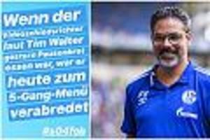 Nach Dreifach-Hand der Bayern - Schalke 04: Tochter von David Wagner attackiert Video-Schiri