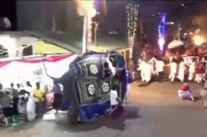 festival: sri lanka: elefanten verletzen bei festumzug 17 menschen