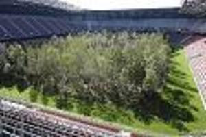 """""""for forest"""" in klagenfurt - rechte instrumentalisieren wald in stadion - und vergessen dabei wichtige botschaft"""