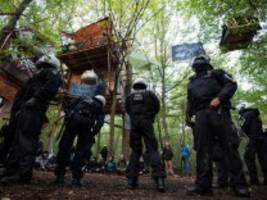 Hambacher Forst: Die Proteste haben den Boden für Fridays for Future bereitet