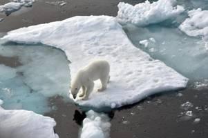 Eisfläche der Arktis dramatisch geschrumpft