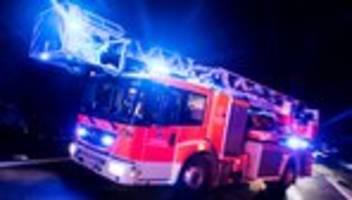 Sachsen: Fahrzeuge der AfD abgebrannt