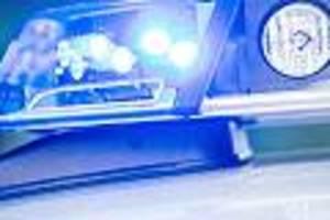 Mühlheim - Polizei fahndet: Hund wird von Auto angefahren und stirbt - Fahrer flüchtet