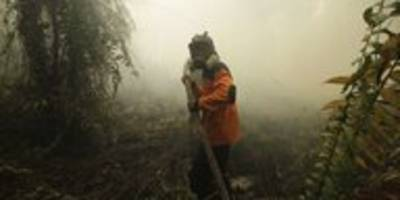 Waldbrände in Indonesien: Regenwälder gehen in Rauch auf