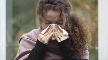 Immunsystem unter Beschuss: Was stärkt die körpereigenen Abwehrkräfte?