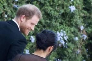 britische royals: harry und meghan feiern mit designerin promihochzeit in rom