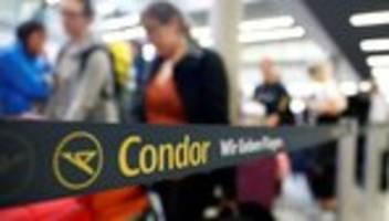 Reisekonzern Thomas Cook: Kann Condor die Thomas-Cook-Pleite überleben?