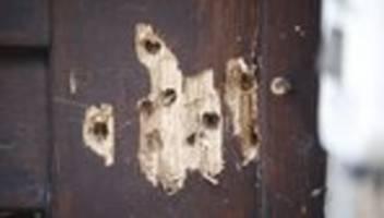 halle: bundesregierung spricht von rechtsextremistischem terroranschlag