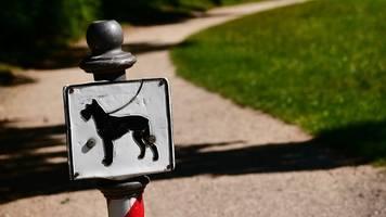 Beste Freunde: Zahl der Hundehalter in Thüringen steigt