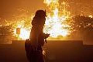 mehr als 1000 feuerwehrleute im einsatz - waldbrände in kalifornien schlagen tausende menschen in die flucht