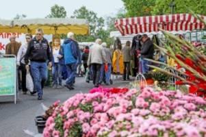hamburgs bester stadtteil: volksdorf – viel ruhe und große wohnungen