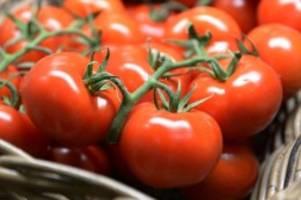 Agrar: Studie: Geschmack spielt beim Tomatenkauf kaum eine Rolle