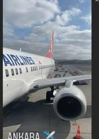 istanbul başakşehir fk: nach aus beim fc st. pauli: cenk Şahin will bei erdogans lieblingsklub trainieren