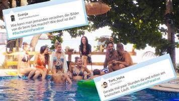 Bachelor in Paradise: Fummeln im Pool und ein kleiner Sex-Skandal: Staffelstart begeistert die Zuschauer