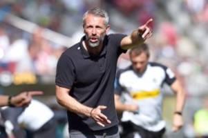 """bundesliga: gladbach-coach rose: """"wir möchten träume der fans erfüllen"""""""