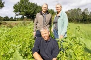 Meilsdorf: Bauern brauchen Geld für Blühstreifen