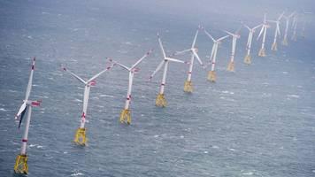 windkraft: nabu warnt vor industrieparks in nord- und ostsee