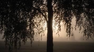 nebel und sonne in berlin und brandenburg