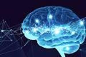 """Fitter und leistungsstärker - Arzt erklärt, wie Hirn-Training Sie zur """"besten Version Ihrer selbst"""" macht"""