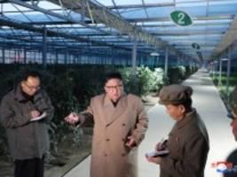 un-bericht: elf millionen nordkoreaner sind unterernährt