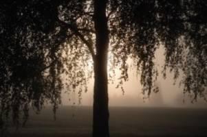 Wetter: Mix aus Nebel und Sonne für die Restwoche