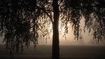 Mix aus Nebel und Sonne für die Restwoche
